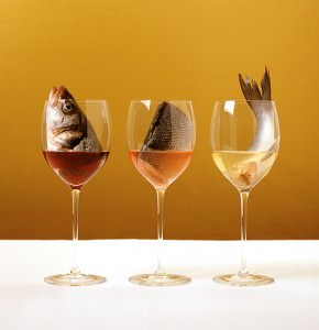 wine_and_fish_pairings